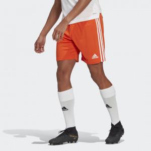 Шорты Squadra 21 adidas Performance